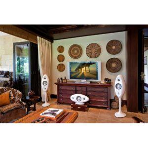 Vivid Audio Oval V1H Centre Channel Speaker